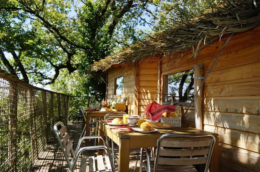 Grimper dans les cabanes dans les arbres depuis Rodez en Aveyron Midi Pyrénées